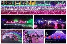 2016洛阳郁金香灯光节在麻屯镇开幕